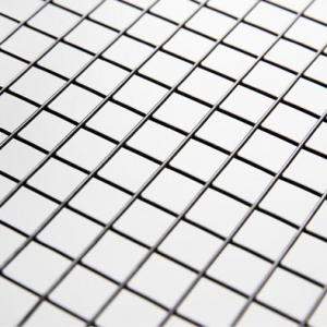 Wire Mesh 3.00*50 APT 316L, Welded 1200mm * 2500mm